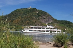 MS Godesia am Siebengebirge